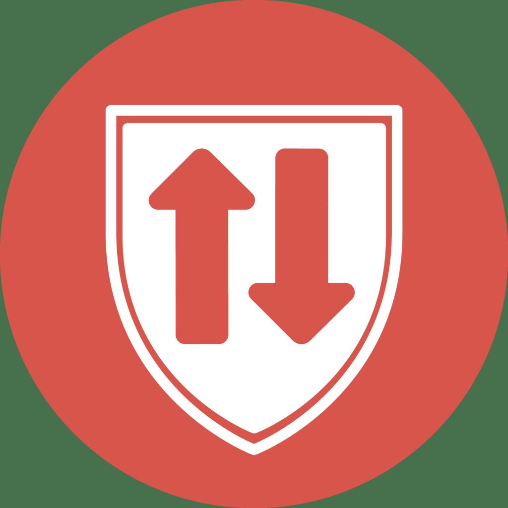 ADIPSYS' solution: DNS protect logo